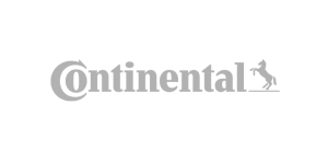 Continental Automotive Group